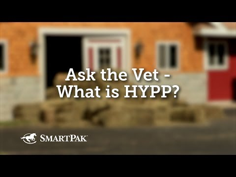 Ask the Vet - What is HYPP?