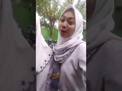 bokep viral