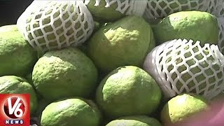 Guava Price Shoots Up In Hyderabad | Wholesale Price Jumps To Rs 80 - 100 Per Kg | V6 News