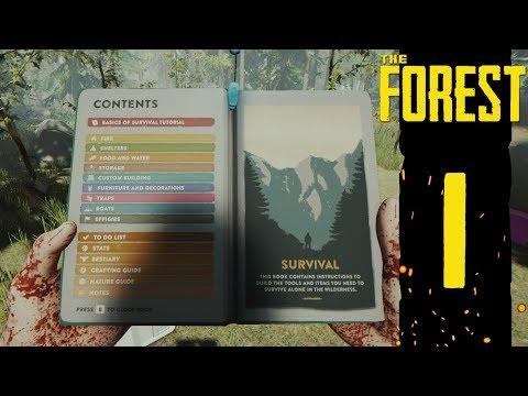 PROFESIONÁLNÍ PŘEŽIVŠÍ | The Forest #1
