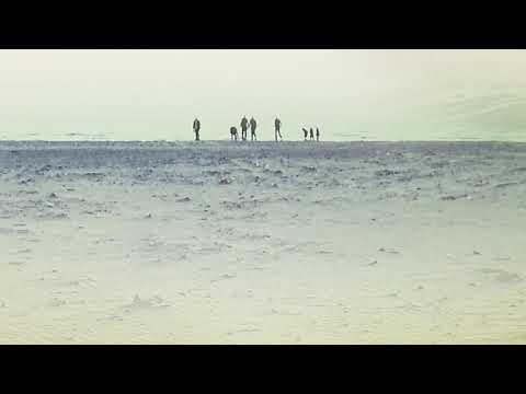 Suplington - Seagulls In Your Mind Mp3