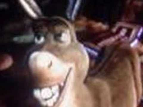 sophii n sarz lil donkey song