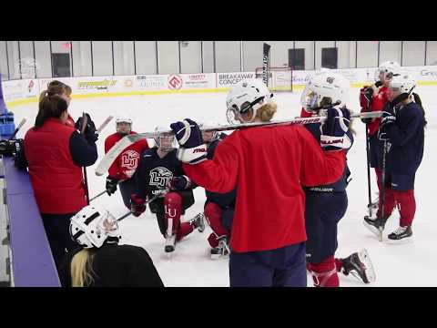 Liberty D2 Women's Hockey 2017 Midseason Update