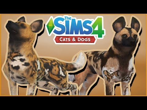Gathering a Pack of African Wild Dogs!! 🌿Sims 4 Wild Animal Gallery Safari!!