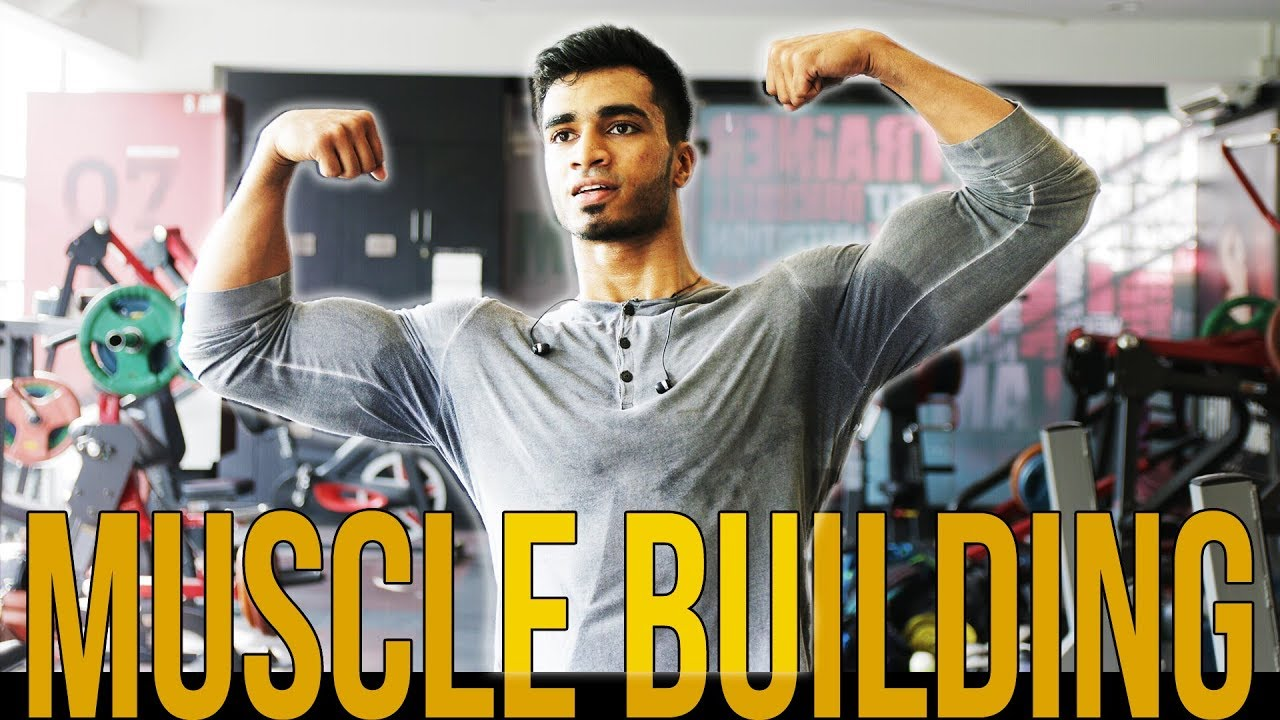 HOW TO CREATE A WORKOUT PLAN | MUSCLE BUILDING WORKOUT