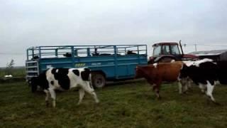 tracteurs florentin