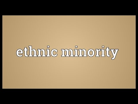Ethnic minority Meaning