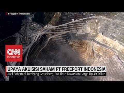 Upaya Akuisisi Saham PT. Freeport Indonesia
