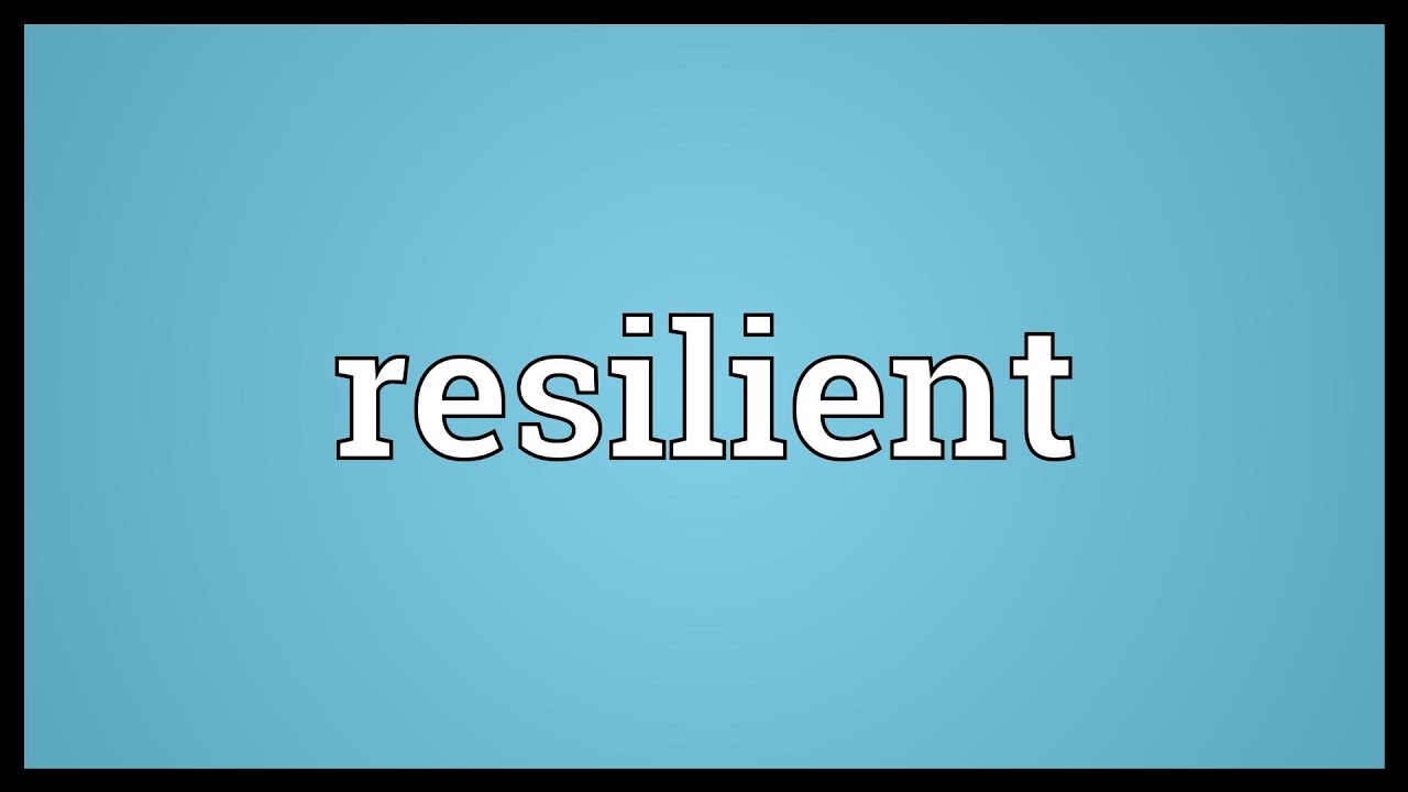 Resilient Meaning