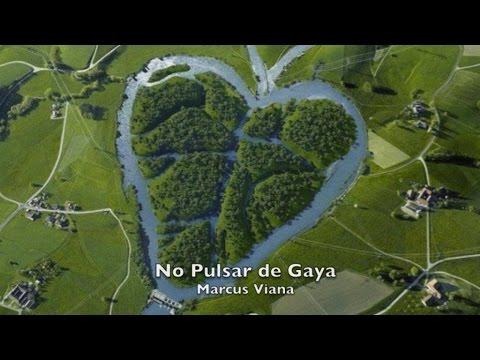 Terra - NO PULSAR DE GAYA - Marcus Viana