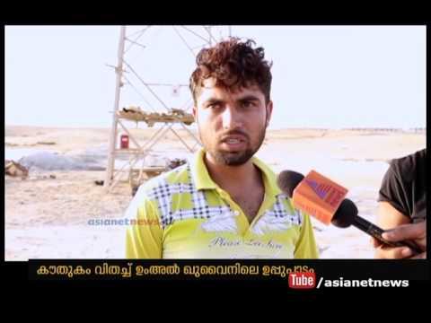 Salt flats in UAE Umm al-Quwain| Gulf News