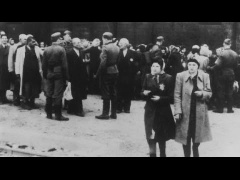 The Scale of Auschwitz