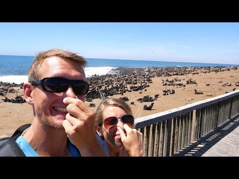 Cape Cross, tausende Robben und die Spitzkoppe - Namibia Roadtrip | VLOG #177
