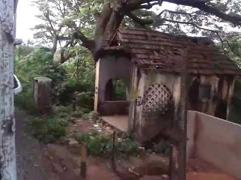 Palakkad Junction to Palakkad Town
