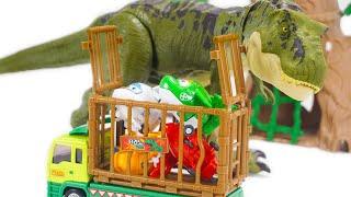 Super Wings Got Captured by Jurassic World Tyrannosaurus Rex! Dino Mecard SD Tyranno Rescues  Them!