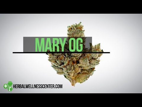 Mary OG Strain Review