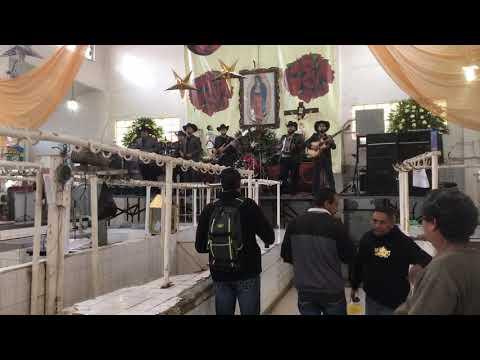 Dia 6 Dia Del Mercado En Sahuayo