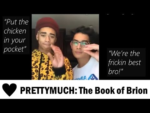 PRETTYMUCH Chronicles #5: The Book of Brion (Brandon & Zion)