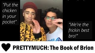 Gambar cover PRETTYMUCH Chronicles #5: The Book of Brion (Brandon & Zion)