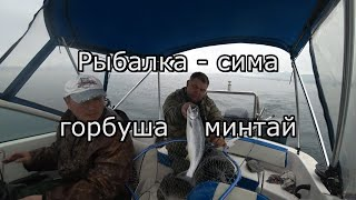 Рыбалка - сима горбуша минтай.Внимание конкурс-якутский нож