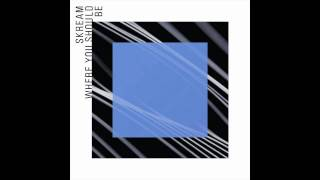 Skream — Where You Should Be ft. Sam Frank (Seiji Remix) [Official]