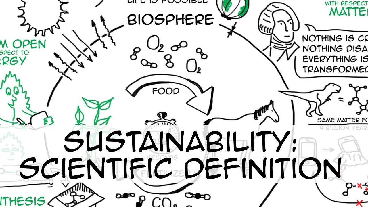 sustainability definition Sustainable development has been defined in many ways, but the most  frequently quoted definition is from our common future, also known as the  brundtland.