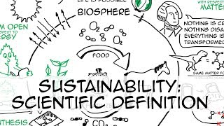 What is sustainability? (Part 1: scientific definition)