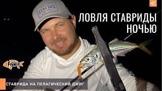 Ловля ставриды на пелагический джиг ночью с берега Тест новых приманок от Fishup saltwaterseries