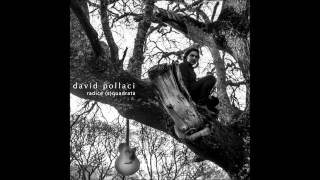 David Pollaci  - Farfalle al vento (strings)