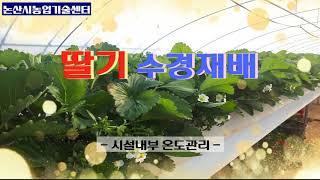논산딸기 수경재배 하우스내 온도관리 요령