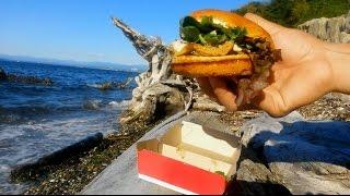 Wendy's Smoked Gouda Chicken On Brioche Review