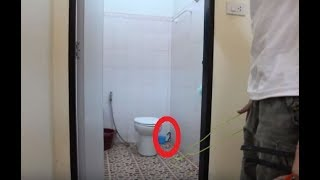 Exterminator Making A House Call Uncovers A Nightmare Not Even He Was Prepared To Deal With