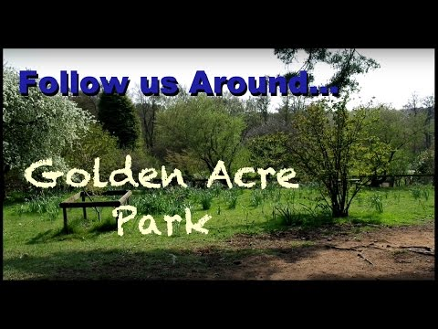 Follow Us Around Golden Acre Park
