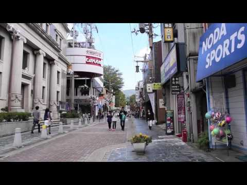 Nara Tourism | Walk from JR Nara Station to N.V.C | Nara Visitor Center & Inn