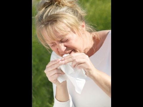 Allergic Rhinitis (Spring Allergies)