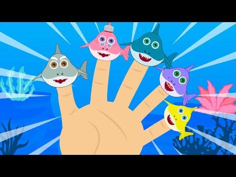 Baby Shark Finger Family Song Baby Shark Nursery Rhymes for Children