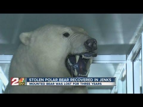 Stolen Polar Bear Recovered In Jenks