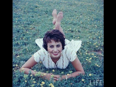 The Gorgeous Supper Model & Actress Sophia Loren