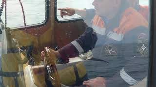 поиски катера. Видео: пресс-служба ГУ МЧС России по Приморскому краю