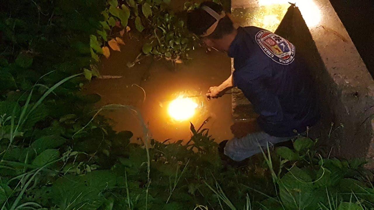 คืนนี้ทีมงานมาลุยวังช้างอีกแล้วครับ สนใจไฟฉายติดต่อ0892006154ครับ