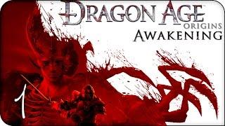 видео Прохождение Dragon Age: Origins Awakening
