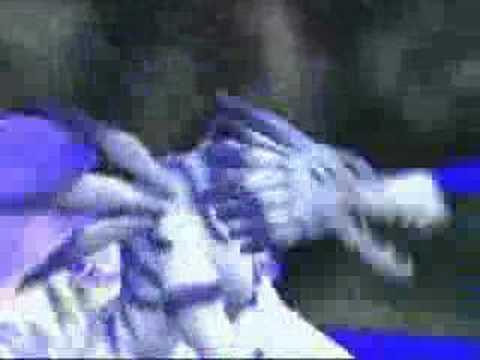 Evolution:Garurumon-Weregarurumon - YouTube