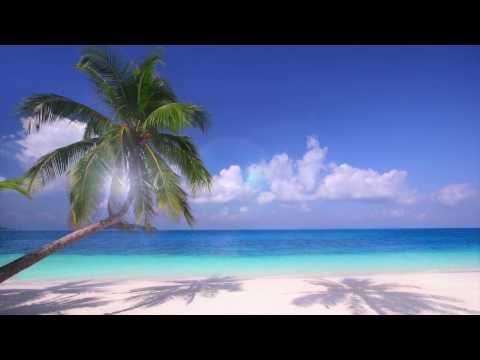 Año Nuevo Punta Cana