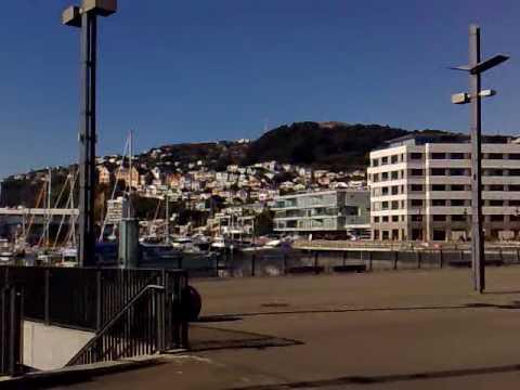 Te Papa museum and Wellington harbour