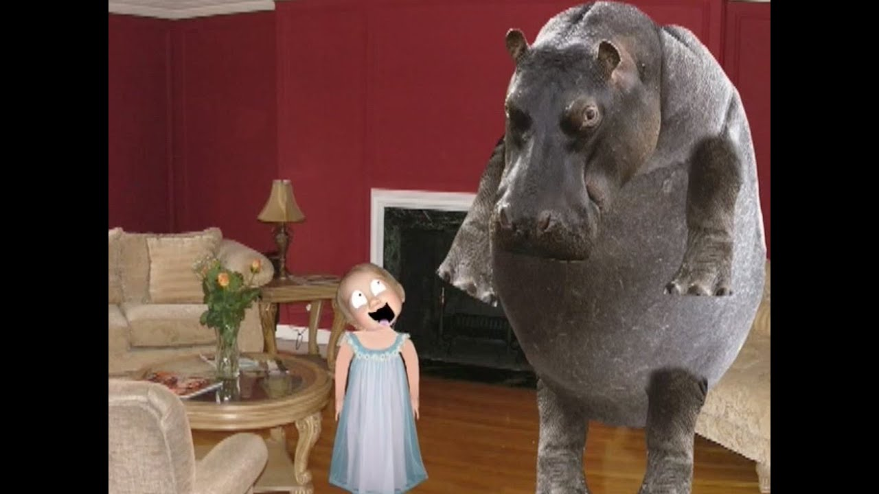 I Want a Hippopotamus for Christmas (unexpected) - YouTube
