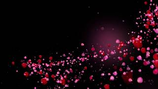 Romantic flying red rose flower petals love heart wedding animated background Hd