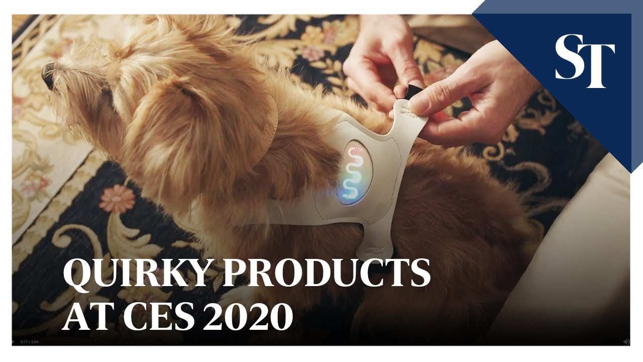 Quirky products at CES 2020 | The Straits Times
