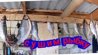 #сиди_дома Чем мы занимаемся на карантине/солим рыбку/у нас очень тепло