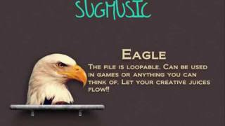 Eagle Sound Effect