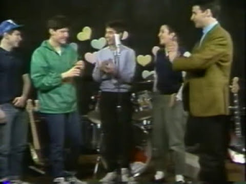 1984 - beastie boys & butthole surfers on the scott & gary tv show